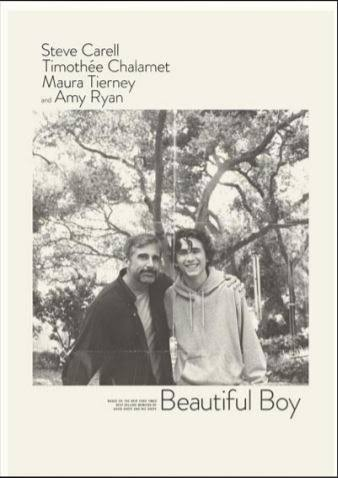 Movie Review: BEAUTIFUL BOY, 2018
