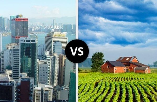 RAISING A FAMILY IN THE COUNTRY VS. THE CITY